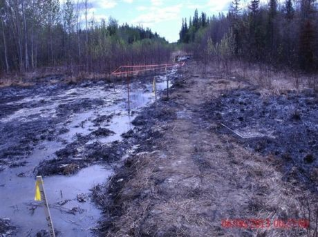 Apache Corporation waste water spill kills 42 hectares of boreal forest