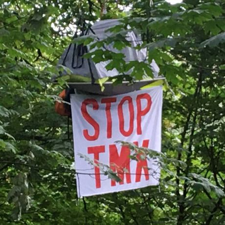 Dr. Takaro is suspended 25 metres up to stop the TMX pipeline expansion